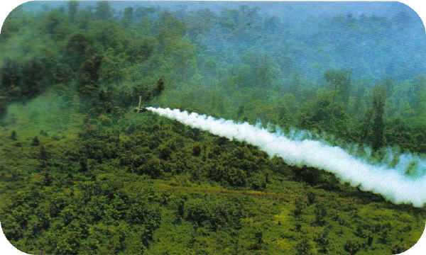 Looking for information on Agent Orange use in Vietnam?