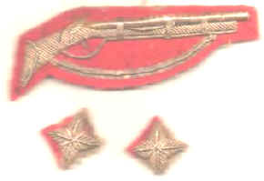 NZ Volunteers Badge - Circa 1866 - 1910