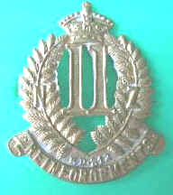 *11th REINFORCEMENTS COLLAR BADGE*