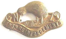 WW1 NZ 17th Reinforcements Collar Badge