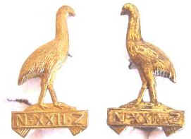 NZ WW1 Pair 22nd Reinfs brass collar badges