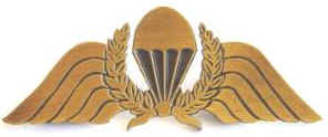 NZ Army Para Wings SCARCE Metal Trial Type