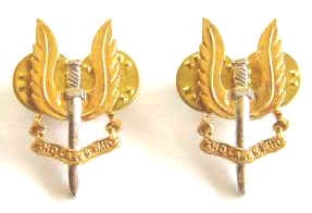NZ Special Air Service Pair Collar Badges
